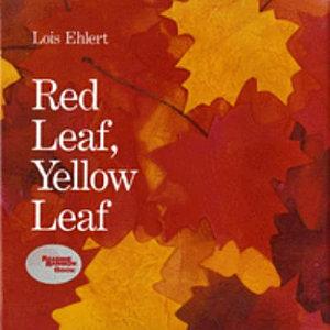 Red Leaf  Yellow Leaf Book