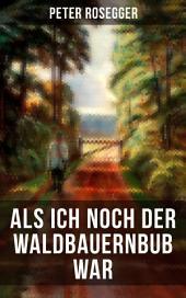 Als ich noch der Waldbauernbub war: Jugendgeschichten aus der Waldheimat