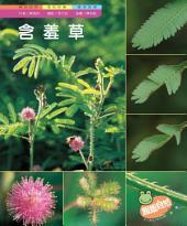含羞草: 親親自然161