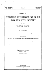 Report on Conditions of Employment in the Iron and Steel Industry in the United States: Accidents and accident prevention