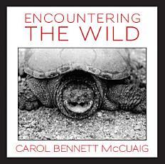 Encountering the Wild PDF