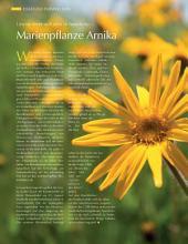Eine Stadt wird zur Marke – durch die Heilpflanze Arnika: ECHT Oberfranken - Ausgabe 41