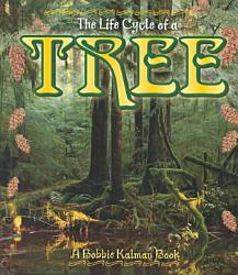 The Life Cycle Of A Tree Book PDF
