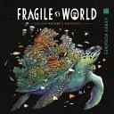 Fragile World PDF