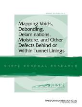 Mapping Voids, Debonding, Delaminations, Moisture, and Other Defects Behind or Within Tunnel Linings