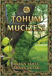 Tohum Mucizesi