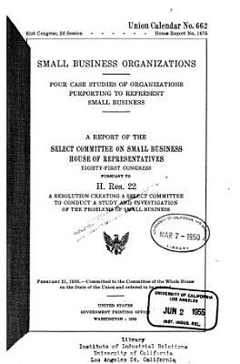 Small Business Organizations PDF