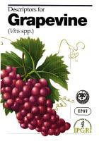 Descriptors for Grapevine  Vitis Spp   PDF