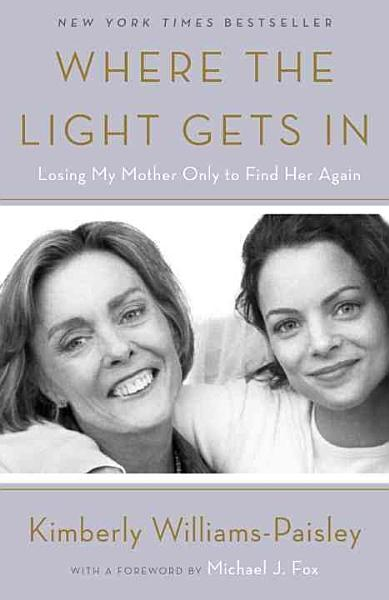 Download Where the Light Gets in Book