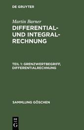 Grenzwertbegriff, Differentialrechnung: Ausgabe 2