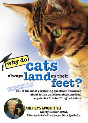 Why Do Cats Always Land on Their Feet