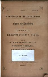 Mycological Illustrations: Being Figures and Descriptions of New and Rare Hymenomycetous Fungi, Volume 2