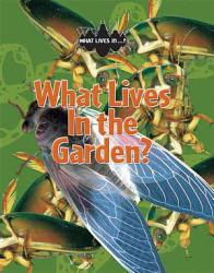 What Lives In the Garden  PDF