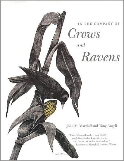 In the Company of Crows and Ravens PDF