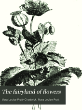 The Fairyland of Flowers: A Popular Illustrated Botany