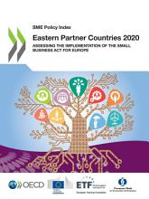 SME Policy Index  Eastern Partner Countries 2020 Assessing the Implementation of the Small Business Act for Europe PDF