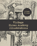 Vintage Human Anatomy Illustrations