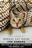 The Honest Bengal Cat Guide for Humans