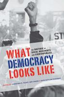 What Democracy Looks Like PDF