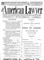 The American Lawyer PDF