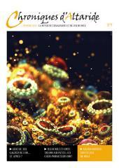 Chroniques d'Altaride n°009 Février 2013: L'Or