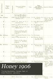 Honey 1906