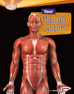 Your Muscular System PDF