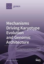 Mechanisms Driving Karyotype Evolution and Genomic Architecture