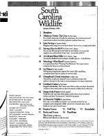 South Carolina Wildlife