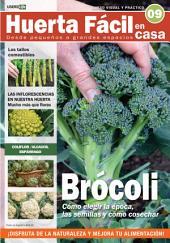 Huerta Fácil en casa9 - Cultiva desde pequeños a grandes espacios: Curso visual y práctico