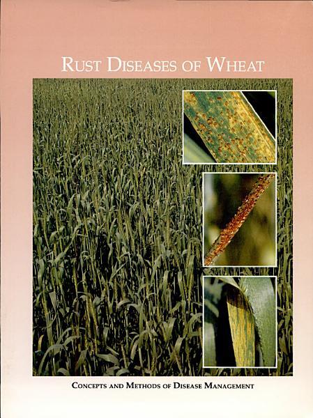 Rust Diseases Of Wheat
