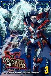 Monster Hunter: Flash Hunter: Volume 3
