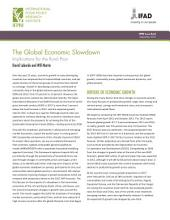 The Global Economic Slowdown: Implications for the Rural Poor