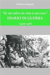 """""""Se mi salvo la vita è un caso"""": Diario di guerra (1916+1918)"""