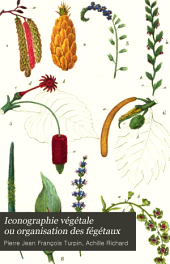 Iconographie végétale ou organisation des fégétaux