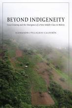 Beyond Indigeneity PDF