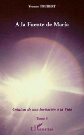 A la Fuente de Maria: Cronicas de una invitacion a la Vida -, Volume5