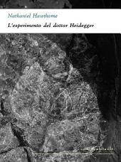 L'esperimento del dottor Heidegger