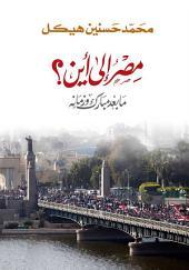 مصر إلى اين: ما بعد مبارك وزمانه