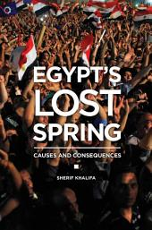 Egypt's Lost Spring: Causes and Consequences