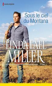 Sous le ciel du Montana: T1 - Les Cow-boys du Montana