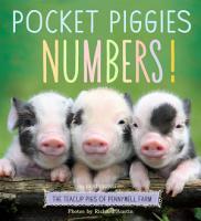 Pocket Piggies Numbers  PDF
