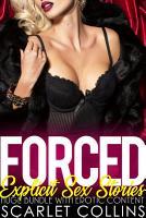 Forced Explicit Sex Stories   Huge Bundle with Erotic Content PDF
