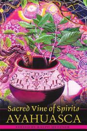Sacred Vine Of Spirits  Ayahuasca
