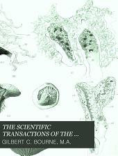 On the Postembryonic Development of Fungia