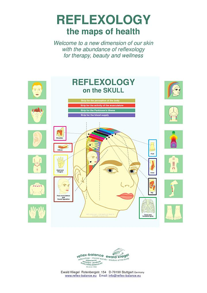 REFLEXOLOGY on the SKULL
