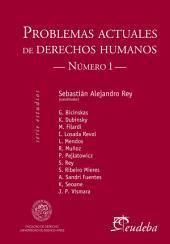 Problemas actuales en derechos humanos: Número I