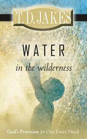 Water in the Wilderness: God's Provision for our Every Need