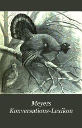 Meyers Konversations-Lexikon: Band 9