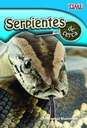 Serpientes de Cerca (Snakes Up Close) (Spanish Version) (Early Fluent)